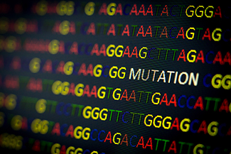 No Family History of Cancer? You Can Still Benefit from Genetic Testing