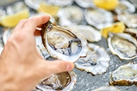 Red Tide & Shellfish Poisoning: What You Need to Know