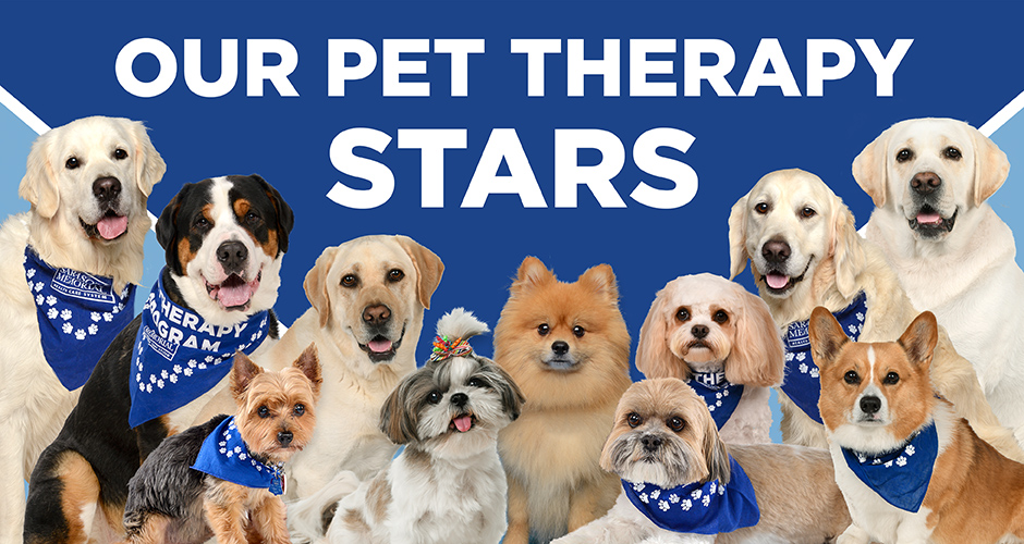 Pet Therapy Stars