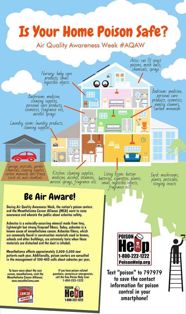 Infographic: Home Safety
