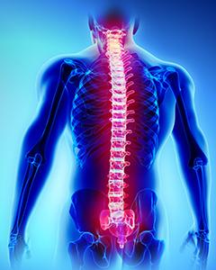 spine surgery class